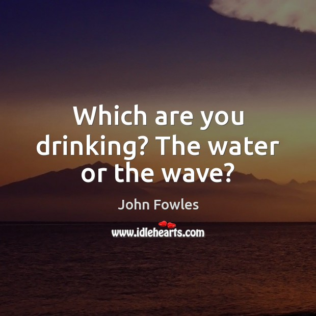 Which are you drinking? The water or the wave? John Fowles Picture Quote