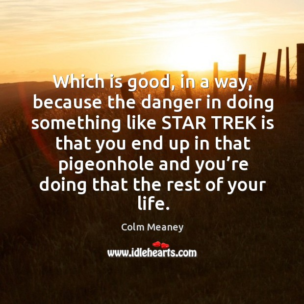 Which is good, in a way, because the danger in doing something like star trek is that Colm Meaney Picture Quote