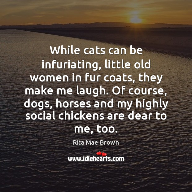 While cats can be infuriating, little old women in fur coats, they Rita Mae Brown Picture Quote