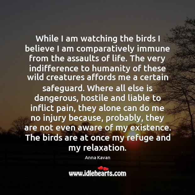 Image, While I am watching the birds I believe I am comparatively immune