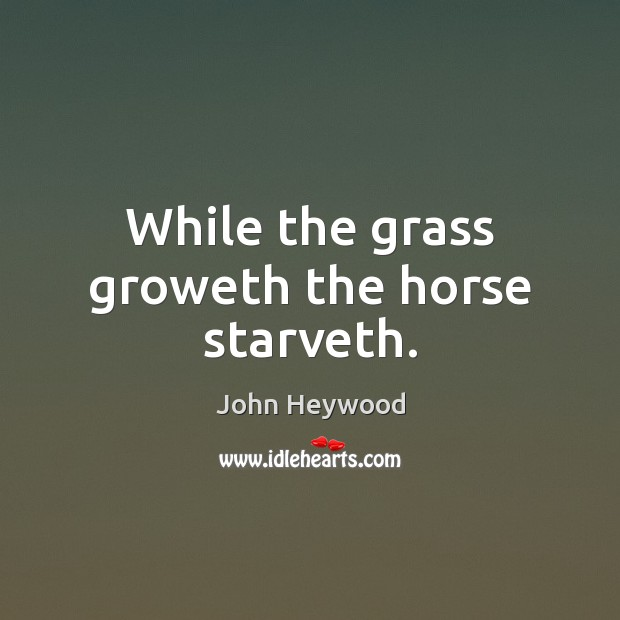 While the grass groweth the horse starveth. John Heywood Picture Quote