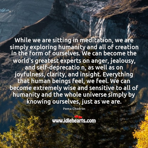 Image, While we are sitting in meditation, we are simply exploring humanity and