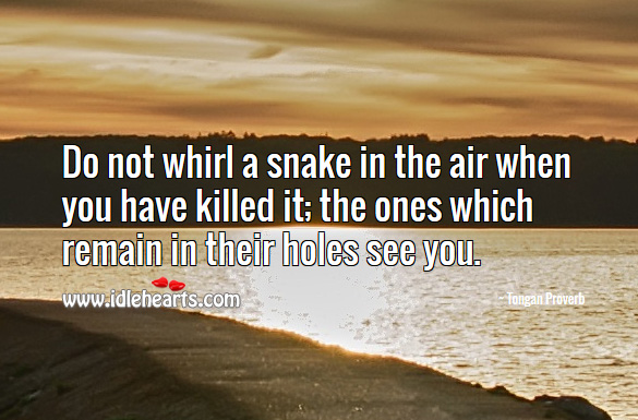 Do not whirl a snake in the air when you have killed it; the ones which remain in their holes see you. Tongan Proverbs Image