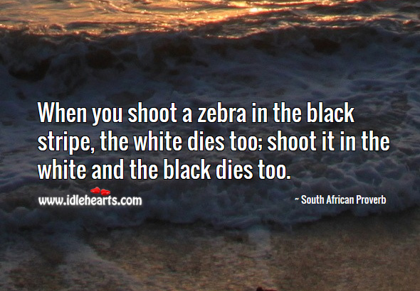 Image, When you shoot a zebra in the black stripe, the white dies too; shoot it in the white and the black dies too.