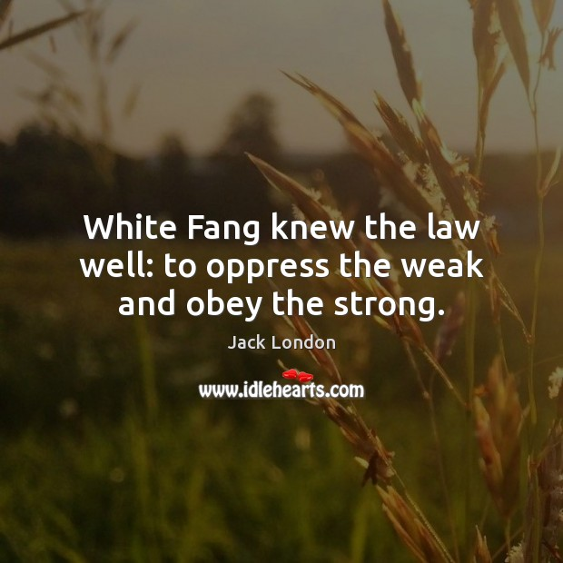 White Fang knew the law well: to oppress the weak and obey the strong. Image