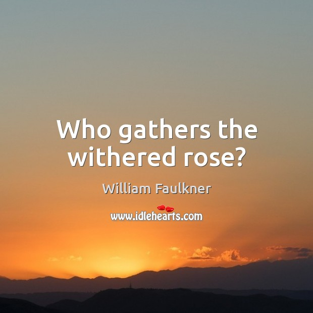 Who gathers the withered rose? Image