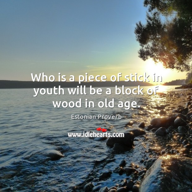 Who is a piece of stick in youth will be a block of wood in old age. Estonian Proverbs Image