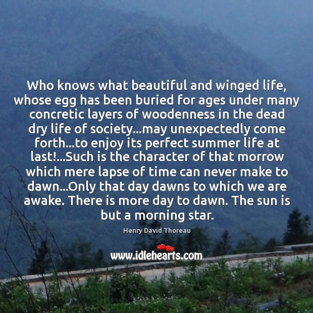 Who knows what beautiful and winged life, whose egg has been buried Image