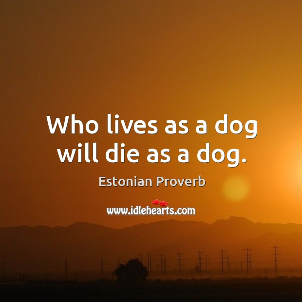 Image, Who lives as a dog will die as a dog.