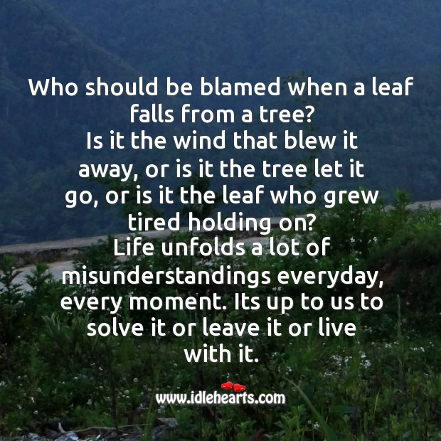 Who should be blamed when a leaf falls from a tree? Image