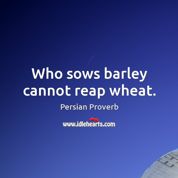 Who sows barley cannot reap wheat. Persian Proverbs Image