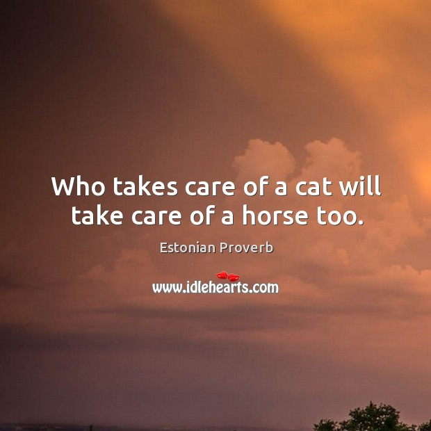Image, Who takes care of a cat will take care of a horse too.