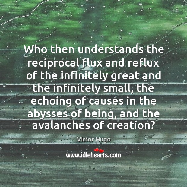 Who then understands the reciprocal flux and reflux of the infinitely great Victor Hugo Picture Quote
