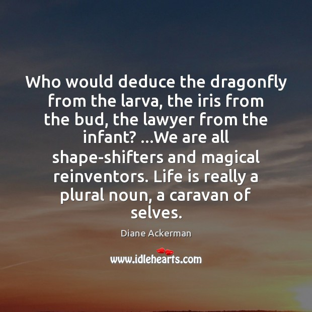 Who would deduce the dragonfly from the larva, the iris from the Diane Ackerman Picture Quote