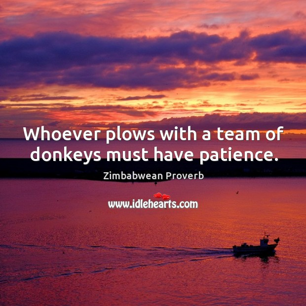 Image, Whoever plows with a team of donkeys must have patience.