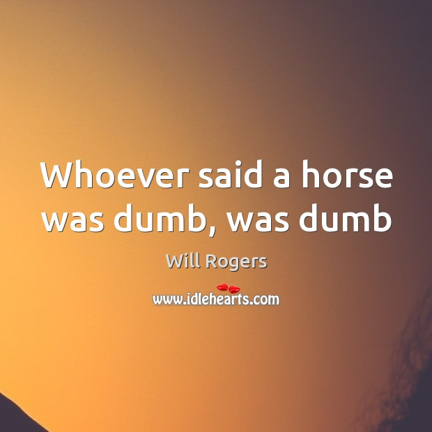 Whoever said a horse was dumb, was dumb Image