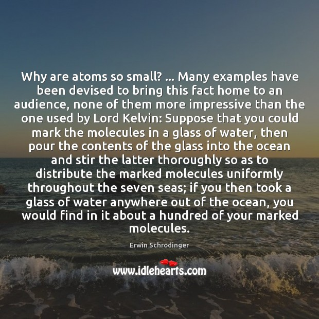 Why are atoms so small? … Many examples have been devised to bring Erwin Schrodinger Picture Quote