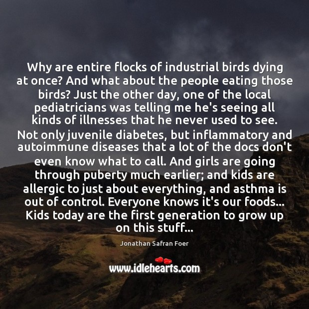 Why are entire flocks of industrial birds dying at once? And what Jonathan Safran Foer Picture Quote