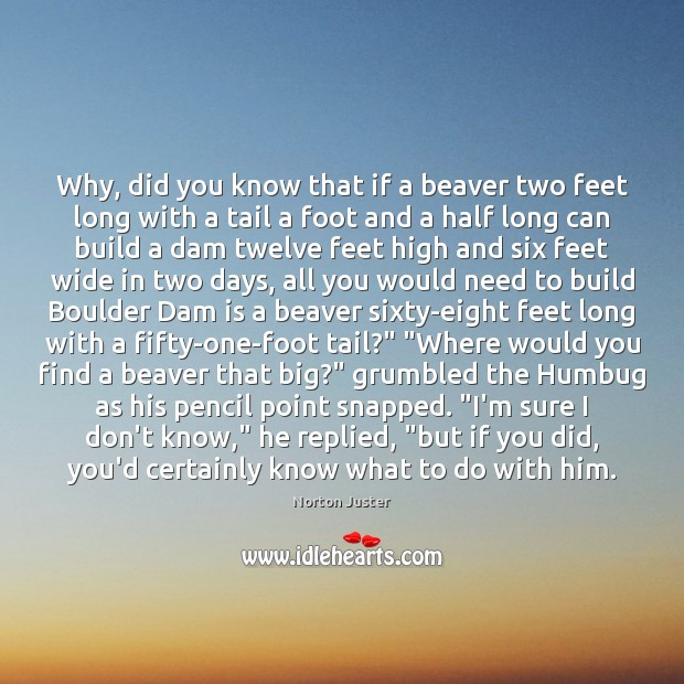 Why, did you know that if a beaver two feet long with Image
