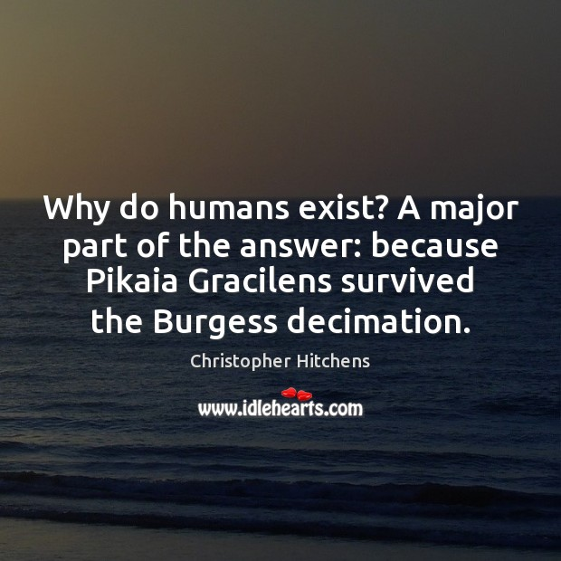 Why do humans exist? A major part of the answer: because Pikaia Image