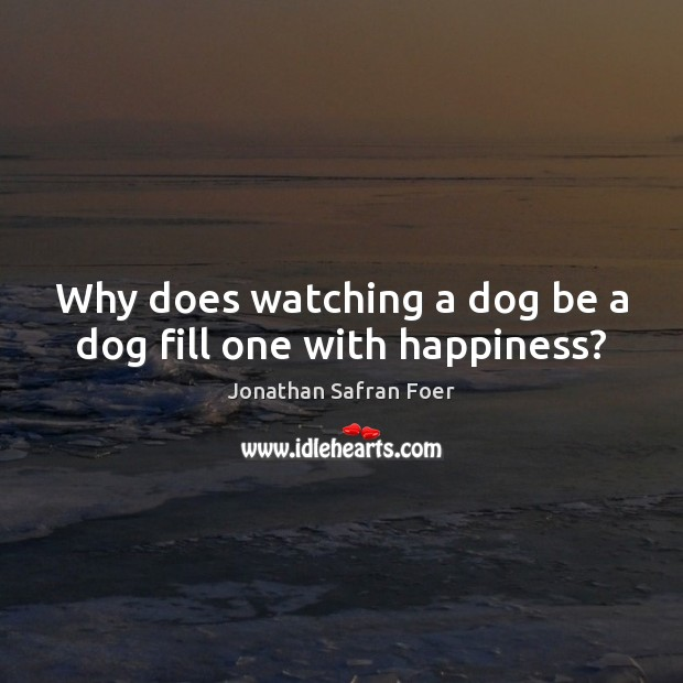 Why does watching a dog be a dog fill one with happiness? Jonathan Safran Foer Picture Quote