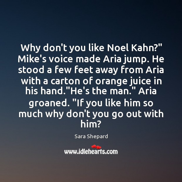 "Image, Why don't you like Noel Kahn?"" Mike's voice made Aria jump. He"