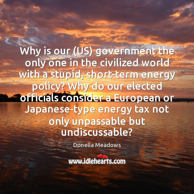 Why is our (US) government the only one in the civilized world Donella Meadows Picture Quote