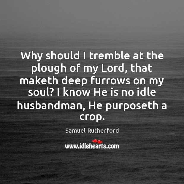 Why should I tremble at the plough of my Lord, that maketh Samuel Rutherford Picture Quote