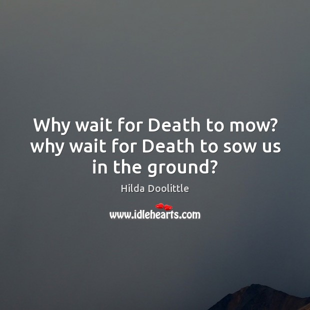 Why wait for Death to mow? why wait for Death to sow us in the ground? Hilda Doolittle Picture Quote