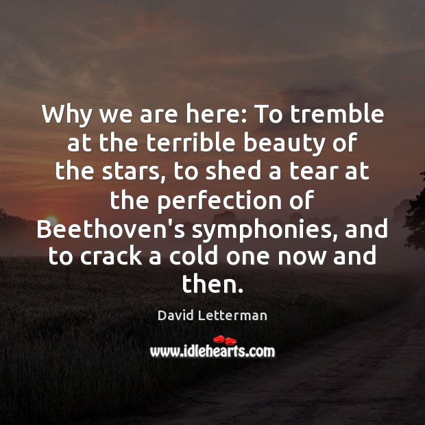 Why we are here: To tremble at the terrible beauty of the David Letterman Picture Quote
