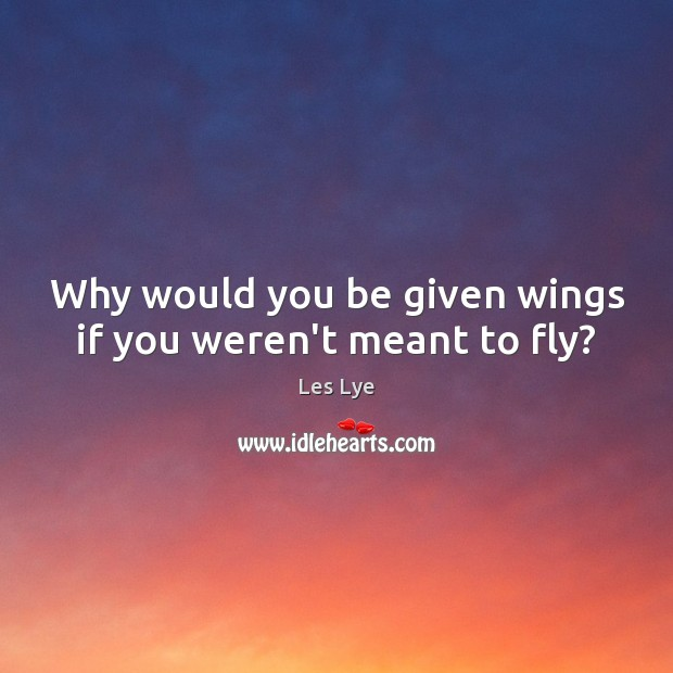 Why would you be given wings if you weren't meant to fly? Image