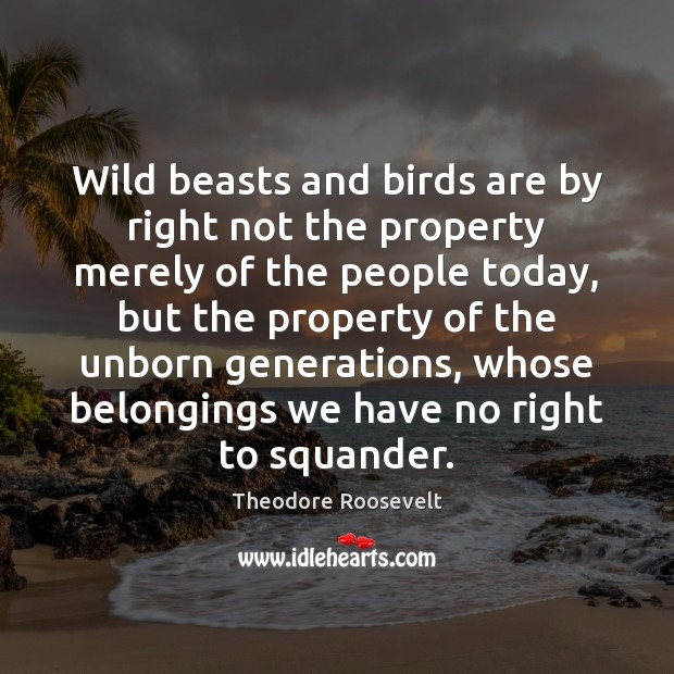 Wild beasts and birds are by right not the property merely of Theodore Roosevelt Picture Quote