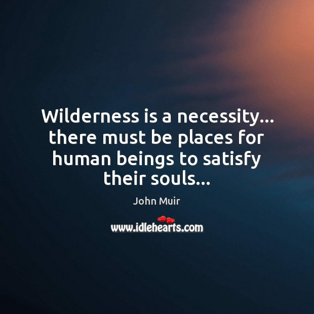 Wilderness is a necessity… there must be places for human beings to John Muir Picture Quote