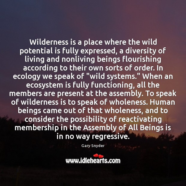 Image, Wilderness is a place where the wild potential is fully expressed, a