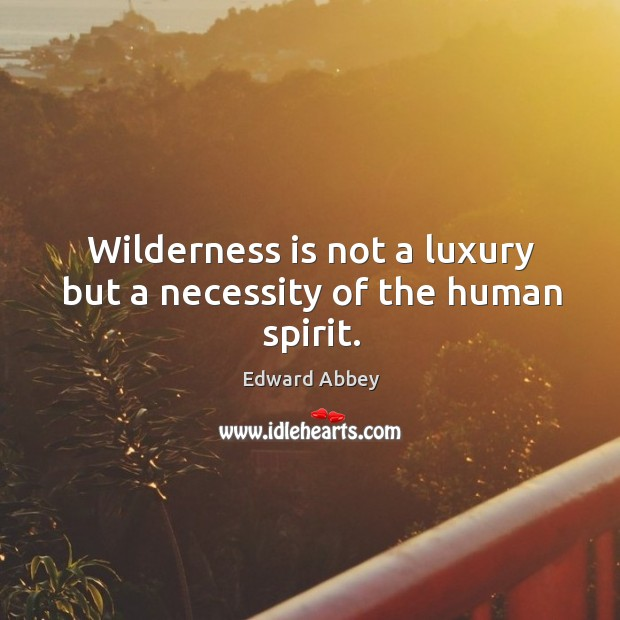 Image, Wilderness is not a luxury but a necessity of the human spirit.
