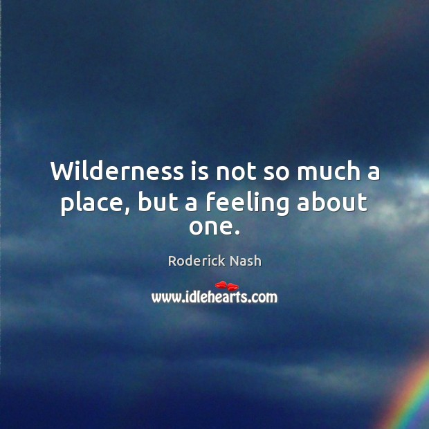 Wilderness is not so much a place, but a feeling about one. Image