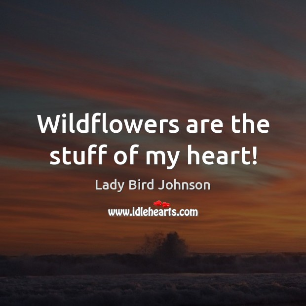 Wildflowers are the stuff of my heart! Lady Bird Johnson Picture Quote