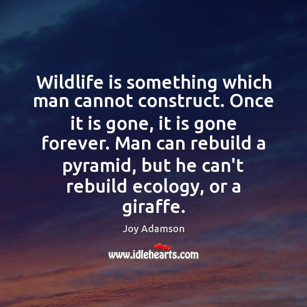 Image, Wildlife is something which man cannot construct. Once it is gone, it