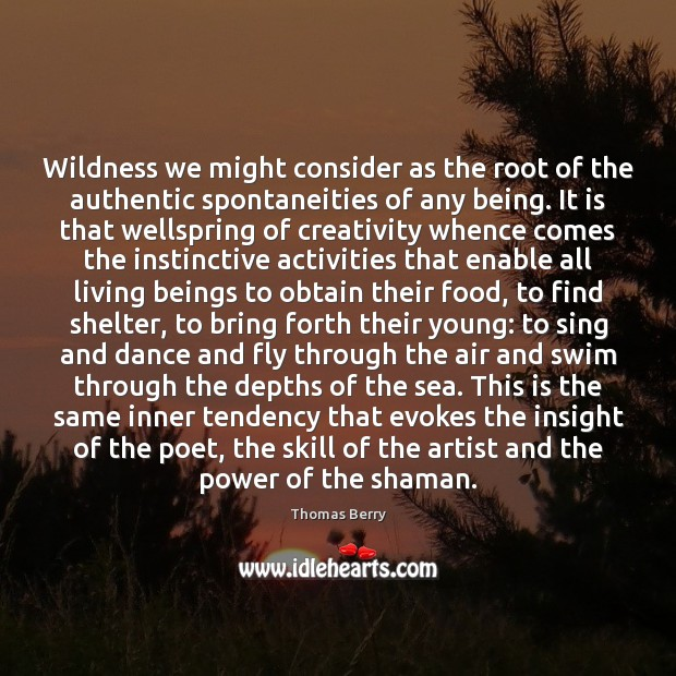 Wildness we might consider as the root of the authentic spontaneities of Thomas Berry Picture Quote