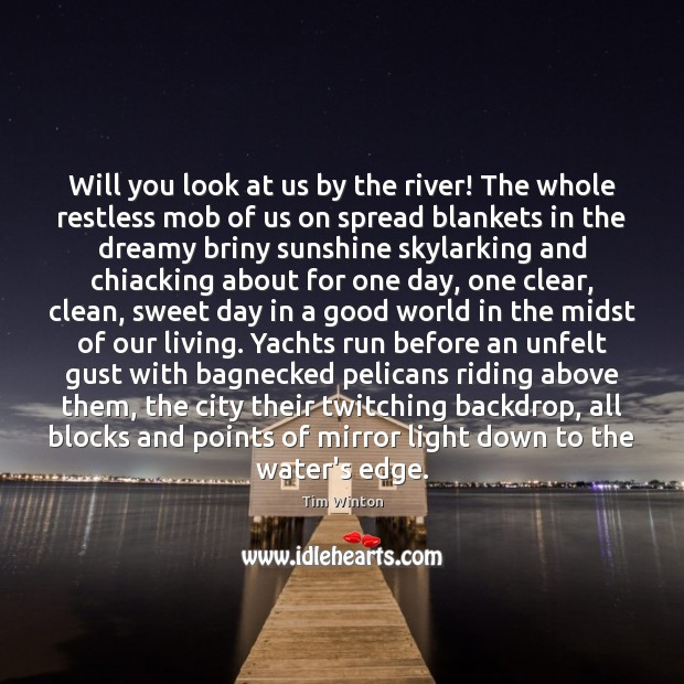 Will you look at us by the river! The whole restless mob Tim Winton Picture Quote