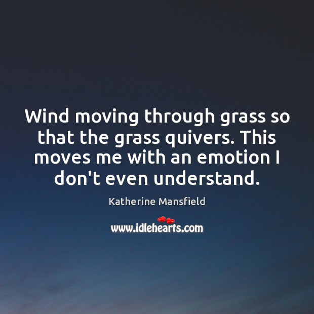 Wind moving through grass so that the grass quivers. This moves me Image