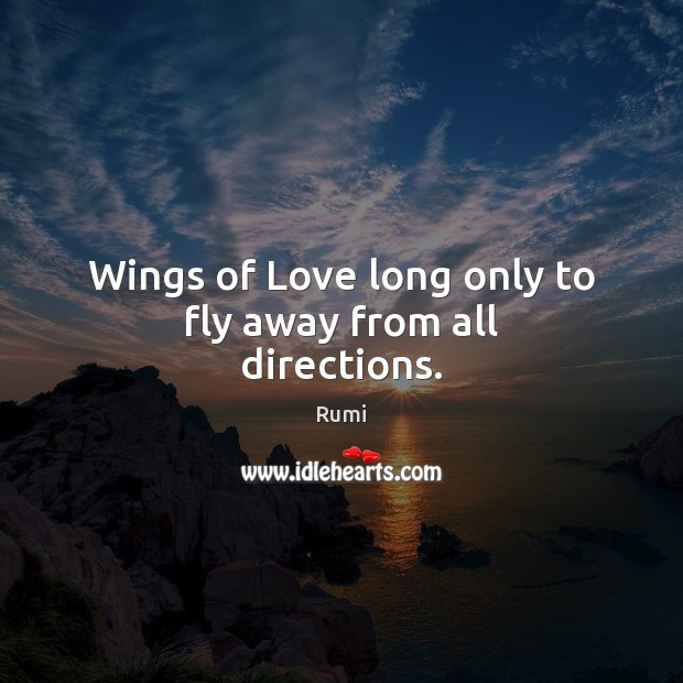 Image, Wings of Love long only to fly away from all directions.