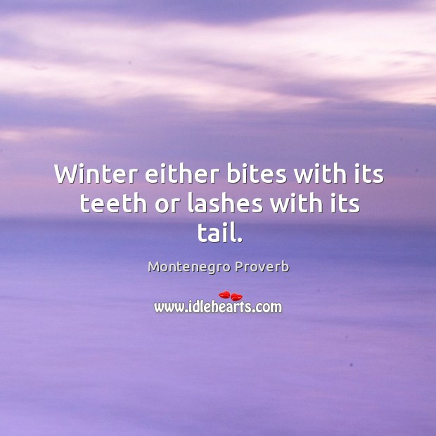 Winter either bites with its teeth or lashes with its tail. Montenegro Proverbs Image