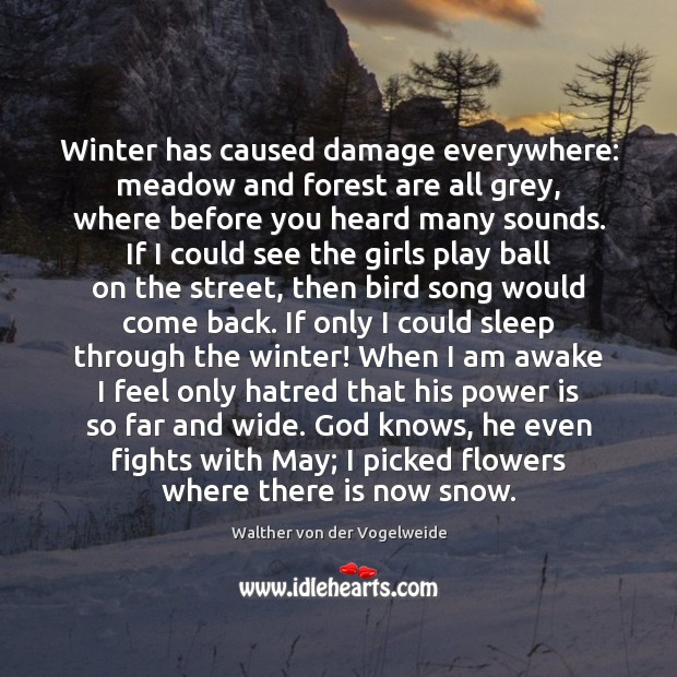 Winter has caused damage everywhere: meadow and forest are all grey, where Image