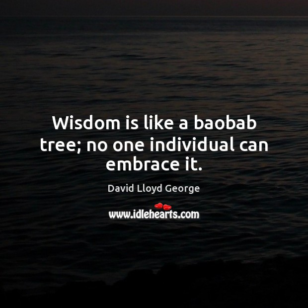 Wisdom is like a baobab tree; no one individual can embrace it. David Lloyd George Picture Quote