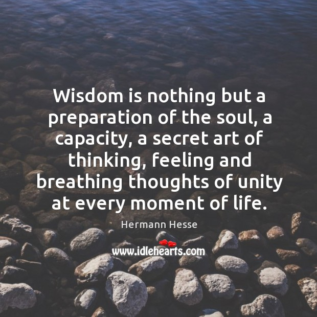 Image, Wisdom is nothing but a preparation of the soul, a capacity, a secret art of thinking