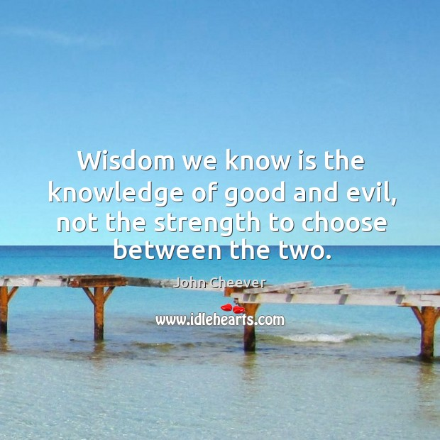 Wisdom we know is the knowledge of good and evil, not the strength to choose between the two. Image