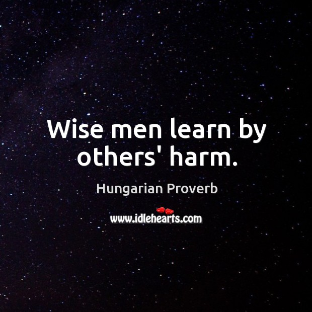 Wise men learn by others' harm. Hungarian Proverbs Image