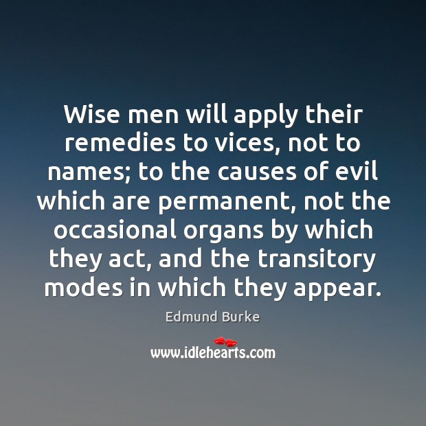 Wise men will apply their remedies to vices, not to names; to Edmund Burke Picture Quote