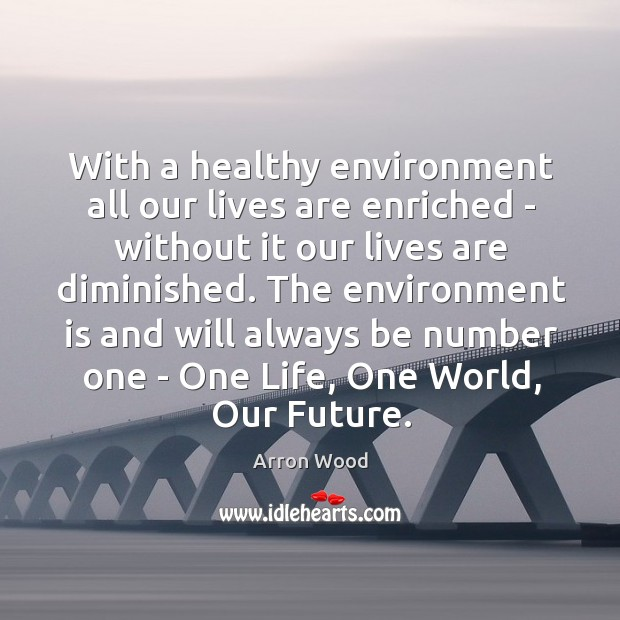 Image, With a healthy environment all our lives are enriched – without it